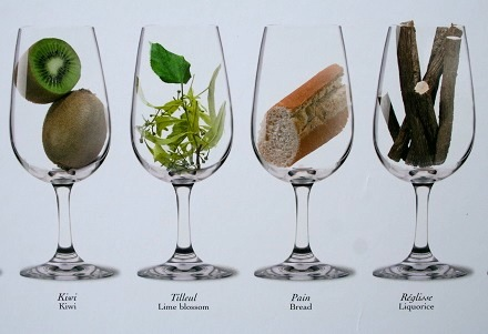 Wine aromas graphic courtesy of Cote d'Or Imports