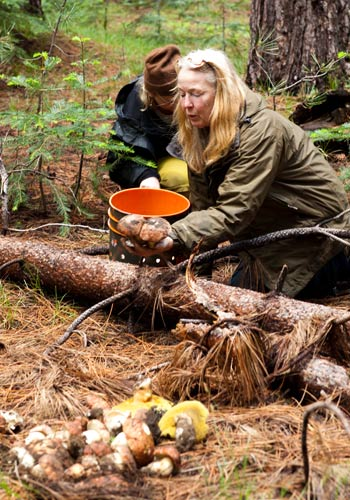 Connie Green, foraging. Credit: Connie Green.