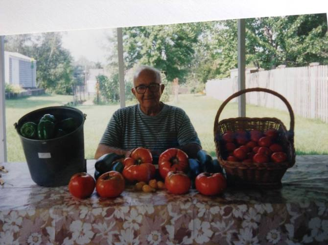 My papa Michael Iannacone with his prized tomatoes.