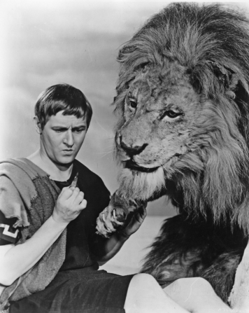 "Caption: ""Hmm, what do you make of the script?"": Alan Young and a furry friend in Androcles and the Lion."