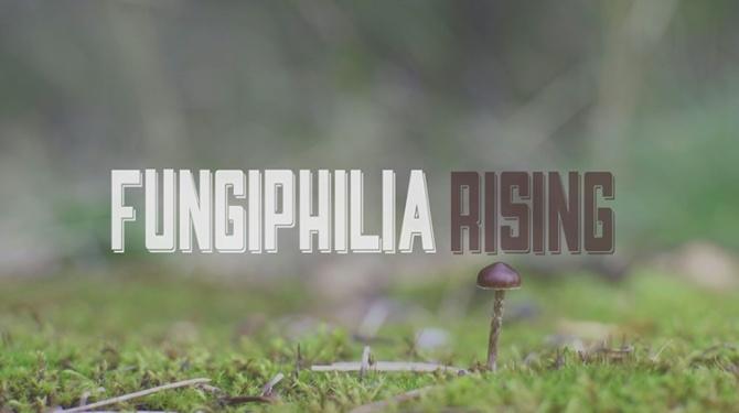 Fungiphilia