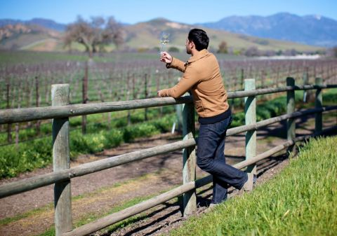 """Jason Wise's documentary Somm screens May 14 in Wine Enthusiast's """"Wine & Film"""" series."""