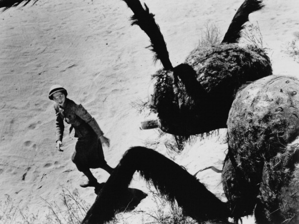 Joan Weldon runs from a giant mutant ant in 1954's Them!. Credit: Warner Bros./Getty Images.