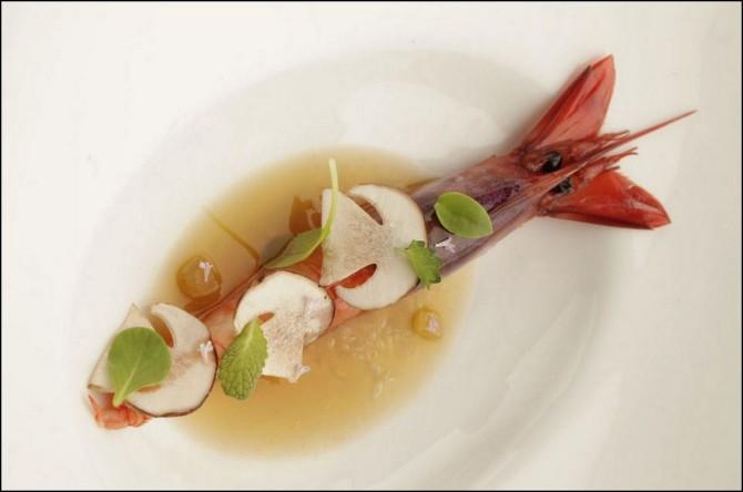 Rocafish