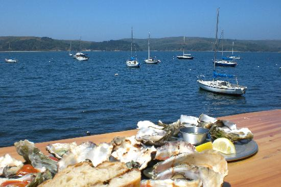 oysters-with-a-view