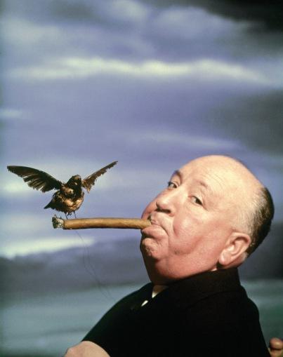 Bird on cigar
