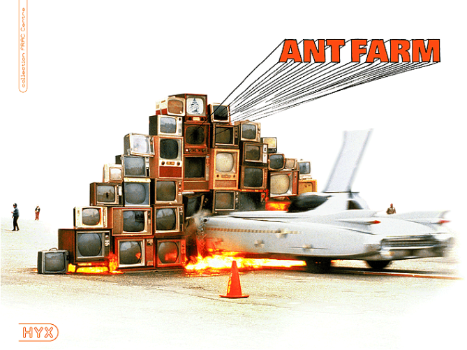 ant-farm (1).png