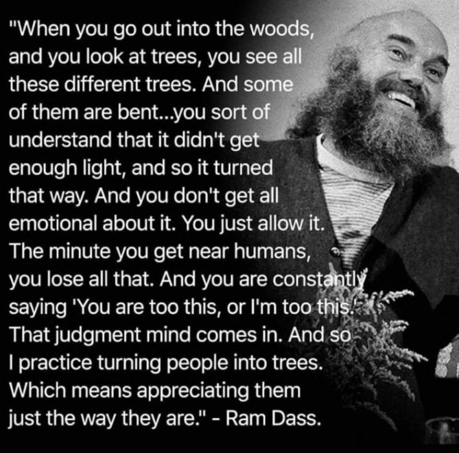 ram-dass-appreciate-trees-be-here-now-709x699.jpg
