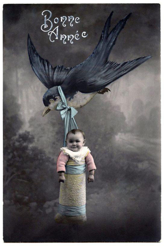bonne-annee-bird-baby-024.jpg